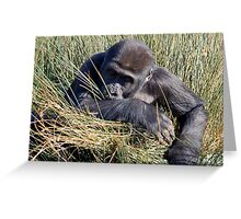 Gorilla in the Grass Greeting Card