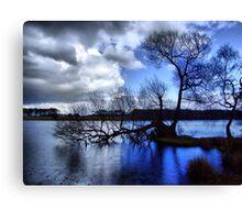 Blue Rain Canvas Print
