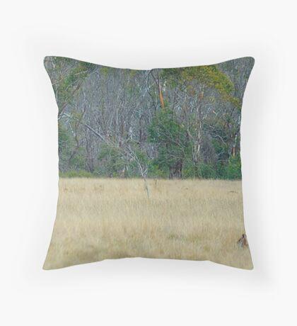 Skippy - Snowy Mountains National Park , NSW Australia Throw Pillow