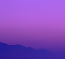 A purple morning by adamfg