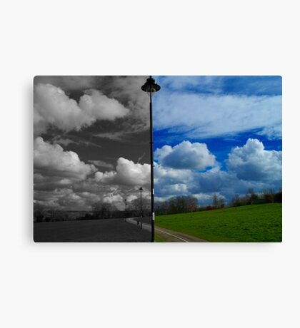 Same Difference Canvas Print