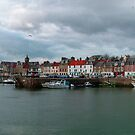 Anstruther Harbour by Tom Gomez