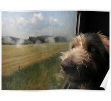 Bruno's first steam train ride  Poster