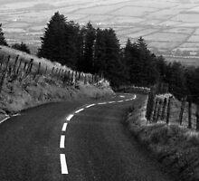 The Winding Road by Michael Jordan