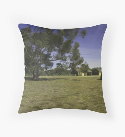 In the back yard. Throw Pillow