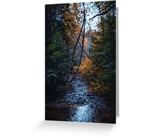 Dank forest Greeting Card