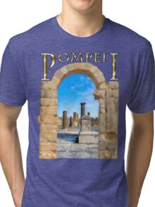 The Ruins Of Ancient Pompeii Tri-blend T-Shirt