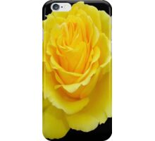 Beautiful Yellow Rose Flower on Black Background iPhone Case/Skin