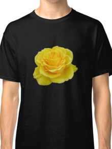 Beautiful Yellow Rose Flower on Black Background Classic T-Shirt