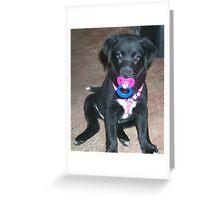 Binky Baby Greeting Card