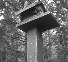 Birdhouse Lookout by Justin Shaffer