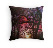 Winter Colors Throw Pillow