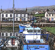 Arctic Tern Carnlough by Wrayzo