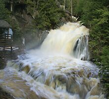 Misty spring falls, Victoria Park, Truro, NS by Rob vanNostrand