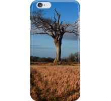 Standing Proud iPhone Case/Skin