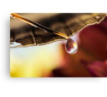 Last Drop of Fire Canvas Print