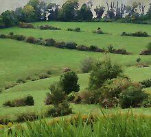 50 Shades of Green by vigor