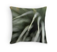 Black Boy 04 Throw Pillow