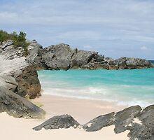 Bermuda by Carlos Mejias