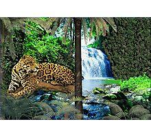 NA768-Illusive Amazon Majesty Photographic Print