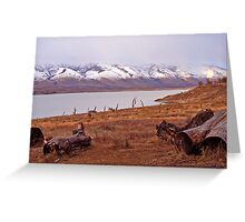 Lago Argentino Greeting Card
