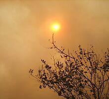 Smoky Sun by AmyAutumn