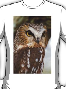 Saw Whet Owl - Amherst Island, Ontario T-Shirt