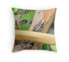 Did he see me? Throw Pillow