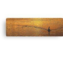 Wake - Narrabeen Lakes, Sydney Beaches Sydney Australia Canvas Print