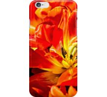 Red Tulips Macro iPhone Case/Skin