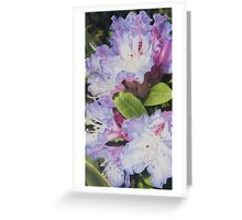 'Rhododendron' Greeting Card