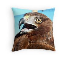 All I Need Is Time... Horatio - Harrier Hawk - NZ Throw Pillow