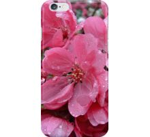 Pink Apple Blossoms iPhone Case/Skin