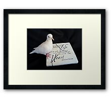 Pursue Your Heart... - White Dove - NZ Framed Print