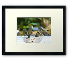 Zip It... Or Step Outside And We Can Finish This!!! - Silver-Eyes - NZ Framed Print
