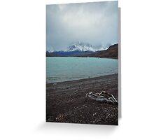Lago Grey, Torres Del Paine Greeting Card