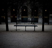 Jardin du Palais Royal, Paris. by Stephane-Franck Berthelot