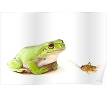 Frog and cricket  Poster