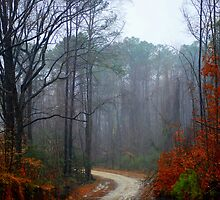 """The Road To """"The Haunted Ramsey House"""" by madman4"""