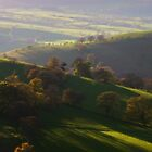 Shropshire Hills by Dawn Hutchinson