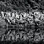 Rock Reflections by Erika Sturgill