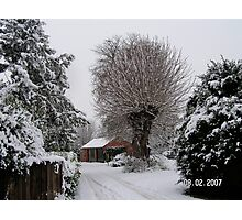 A winters day Photographic Print