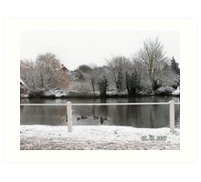 The duck pond Art Print