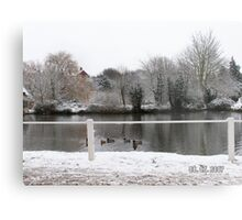 The duck pond Metal Print