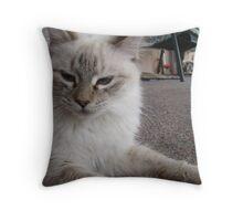 Tough Cat Throw Pillow