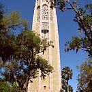 Bok Sanctuary Carillon Tower by Rebecca Cruz