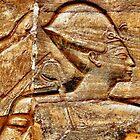 Golden Pharaoh by jcjimages