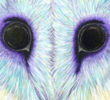 Barn Owl at Bob's Sticker