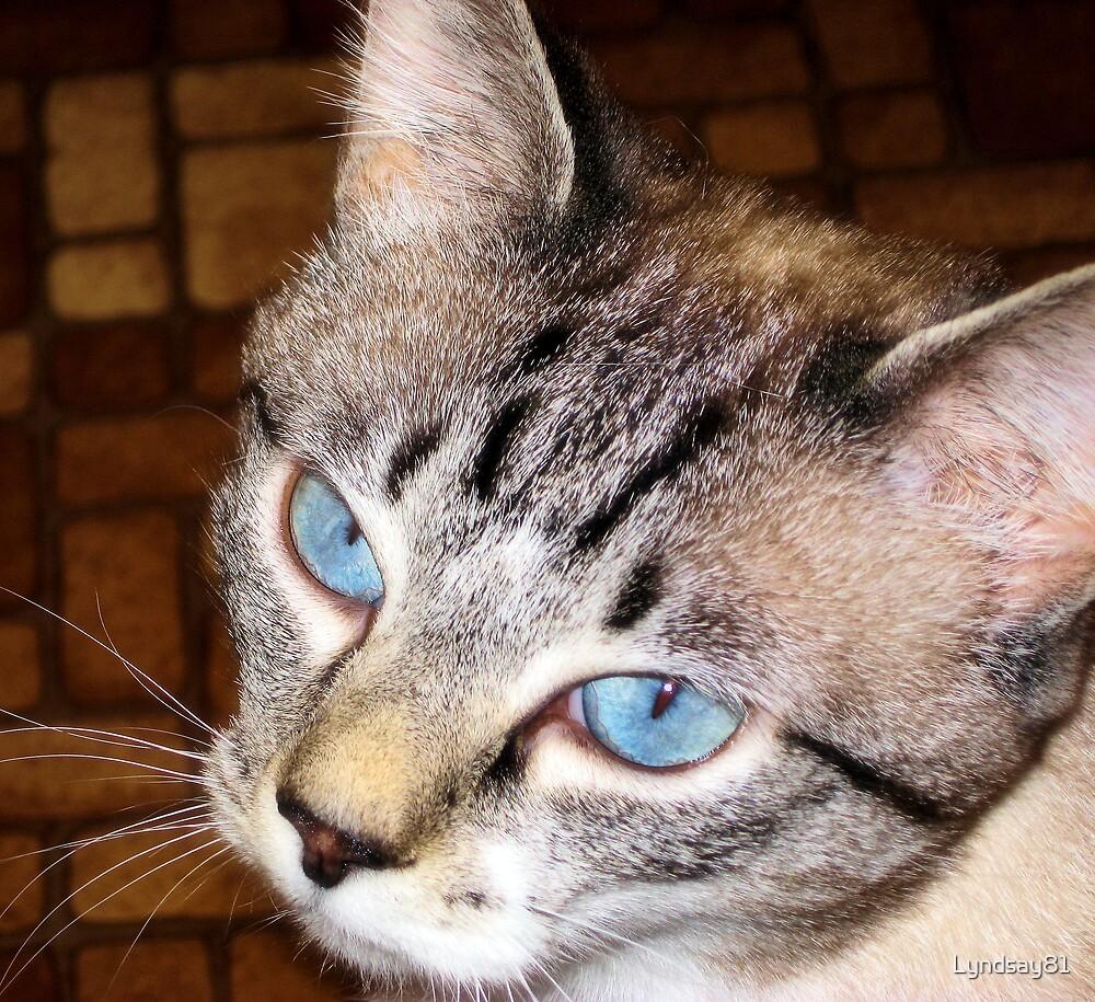 Blue Eyed Girl  by Lyndsay81