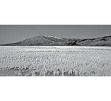 Idaho Scenic Pastures Photographic Print